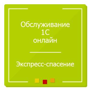 Обслуживание 1С онлайн, экспресс-помощь, иконка